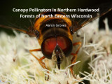 Canopy pollinators in northern hardwood forests of north eastern Wisconsin